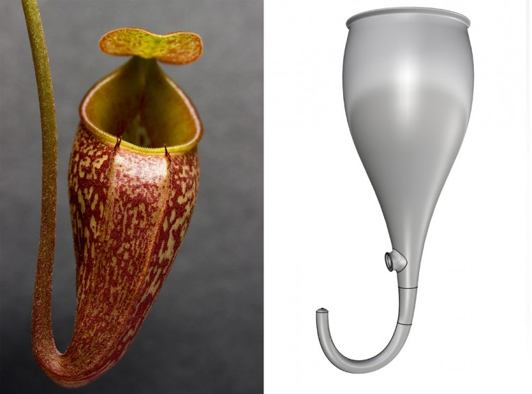 "Nepenthes design, © Marilu Valente, is inspired by a carnivorous plant and the idea that ""in nature, there is no waste,"" everything is cyclic."