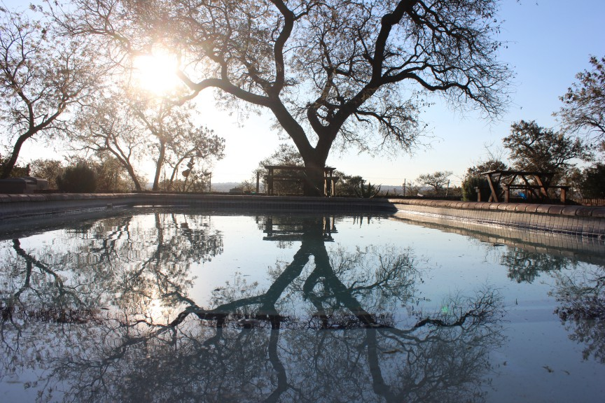 Water Reflection in Polokwane South Africa Photograph by Zachariah Rapola