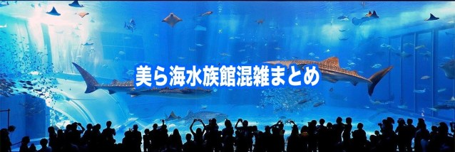 【美ら海水族館混雑状況2020】春夏冬休み(GWお盆)&平日と土日!割引クーポン情報