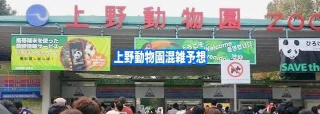 上野動物園 混雑