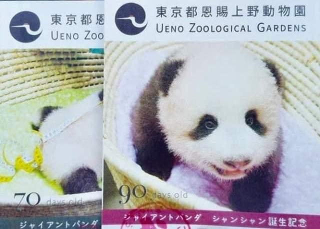 上野動物園 混雑 割引