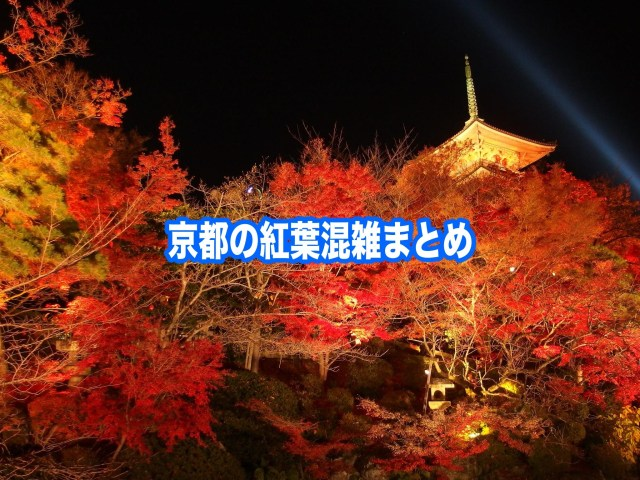 【京都の紅葉混雑状況2020】 平日・土日(見頃時期)!車と自電車混雑回避法