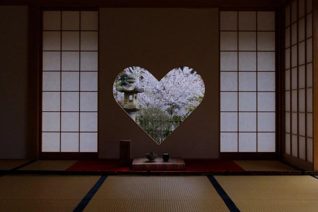 正寿院の桜