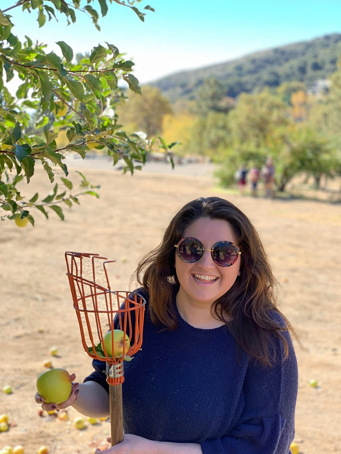 Apple Picking and Camping in Southern California