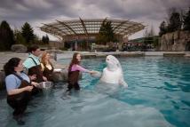 Visit U. Aquariums In 2016