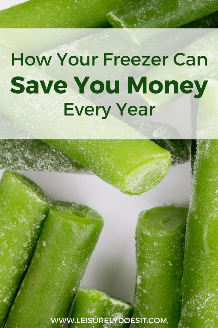 Every time you dump rotted food, you are throwing money away. Your freezer can stop this wasteful cycle.