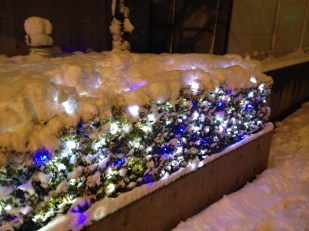 Sous la neige - Shin Meji Dori