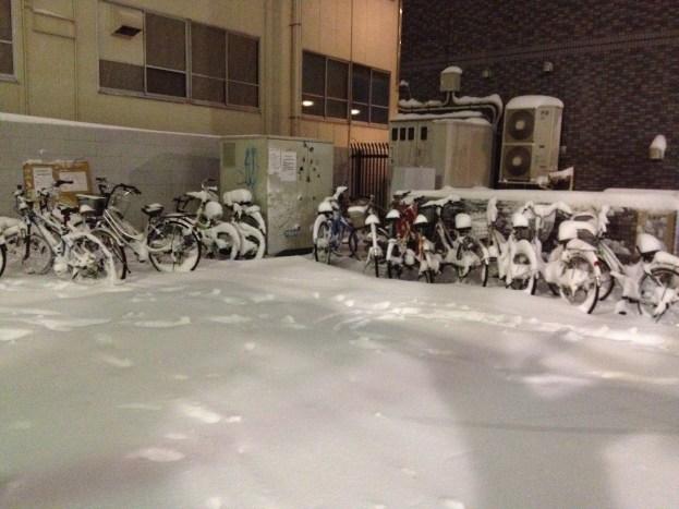 Une armée de vélo sous la poudreuse !