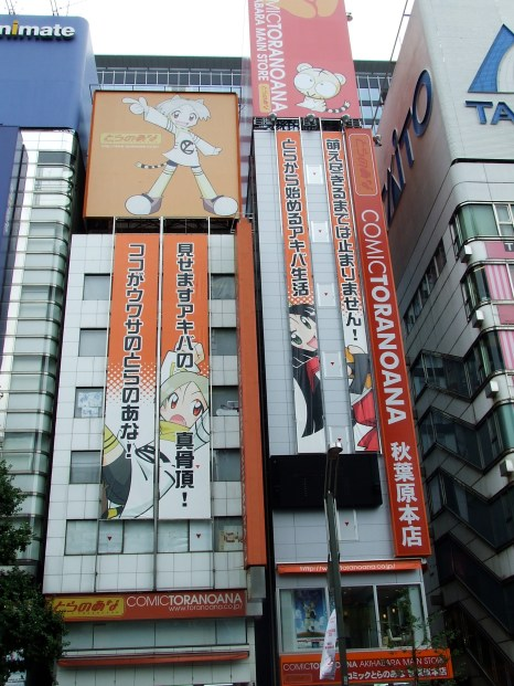 Akihabara 2007