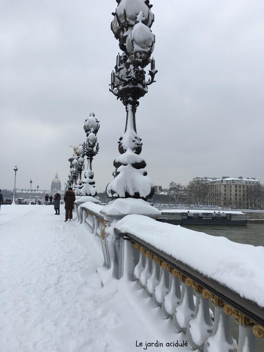 Paris neige 13