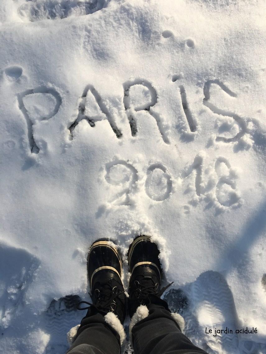 Paris neige 26