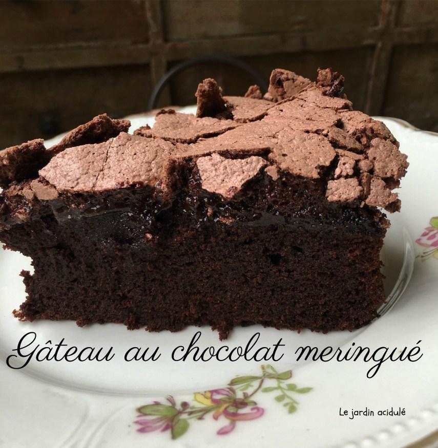 Gâteau chocolat meringué 14b