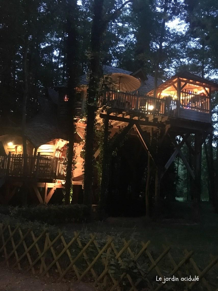 Cabanes dans les arbres2788