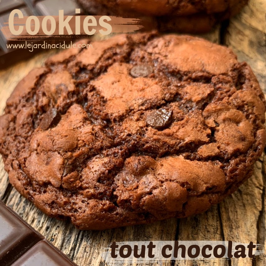 cookie-chocolat