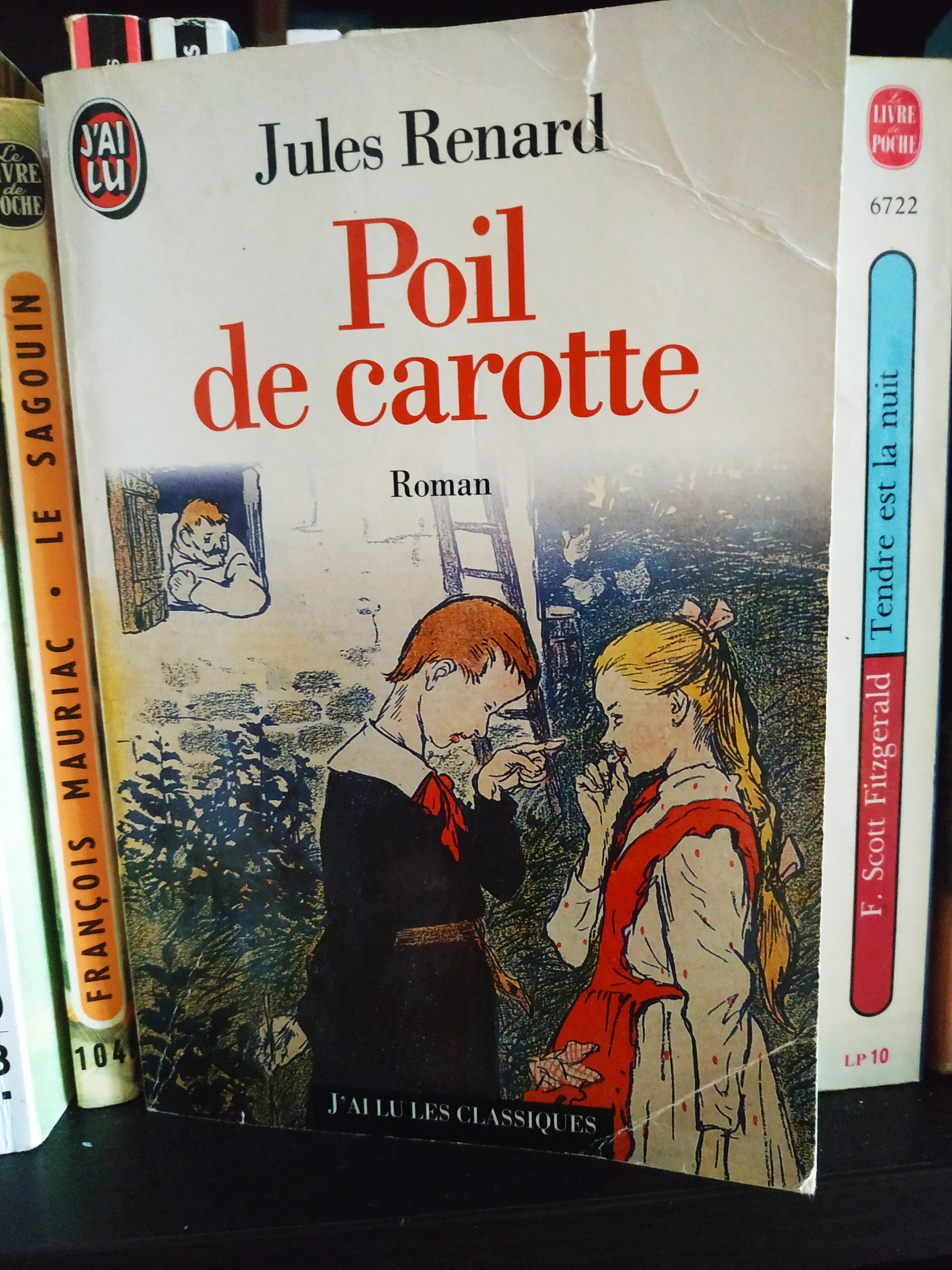 Nom De Famille Poil De Carotte : famille, carotte, Carotte, Jules, Renard