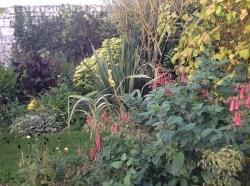 Fuchsia du Cap, phormium le jardin d'épices Laurent Lafaille
