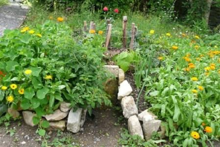 Créer un keyhole garden