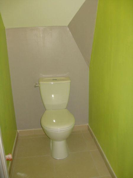 Le Journal de notre Maison  De la couleurdans les WC