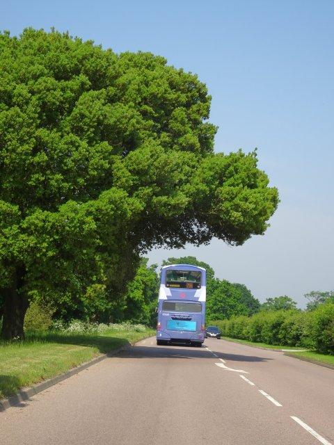 bus en Angleterre