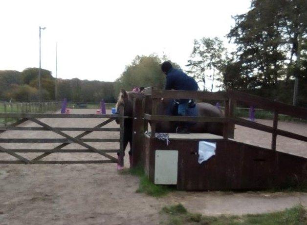centres équestres anglais