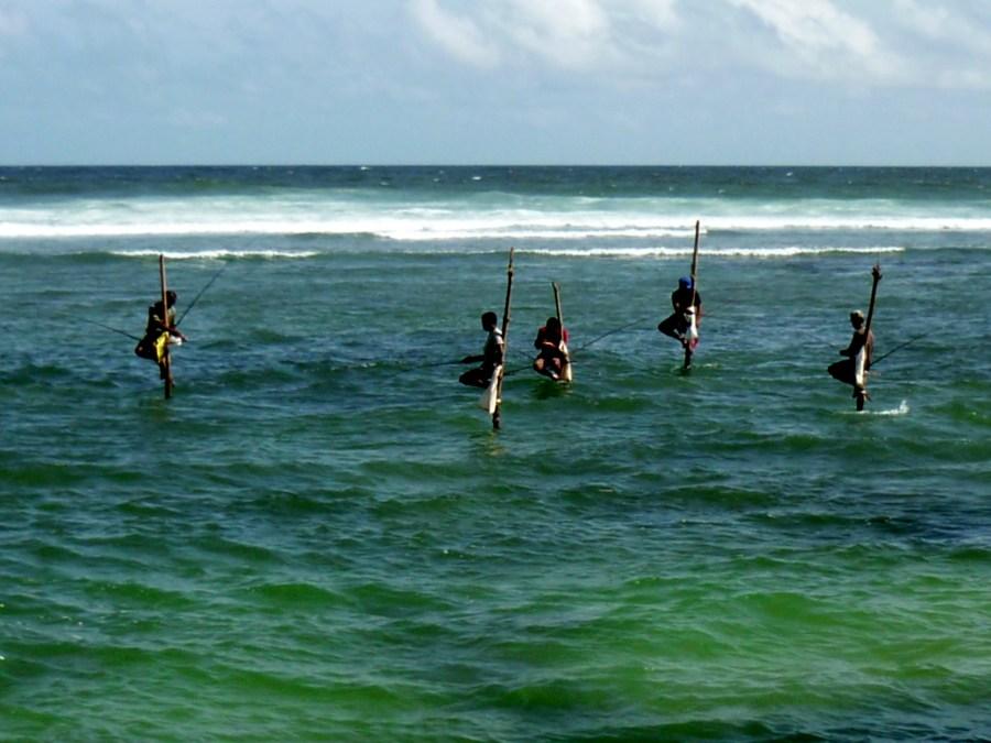 pêche sur échasses au Sri Lanka