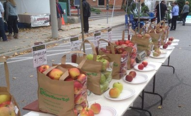 Watson Farms showcasing different varieties of apples