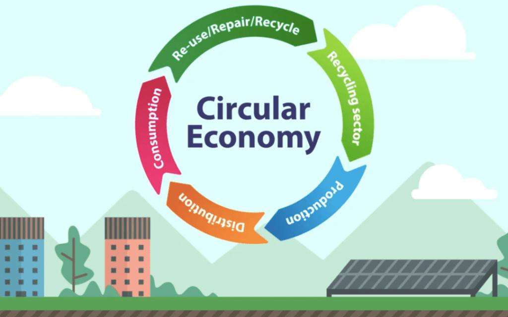 A diagram explaining how a circular economy operates.