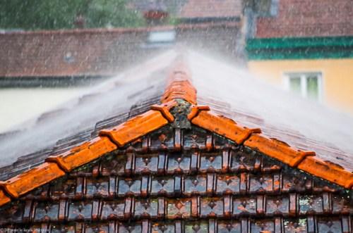 Pluie d'été-260714