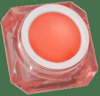Le Keux Cosmetics Coral Mermaid Lip Paint Vintage Pink Pot copy