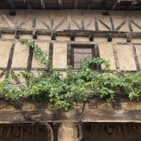 Aux fenêtres de Pérouges