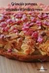grimolée,pommes,amandes,gâteau,pralines roses, companion