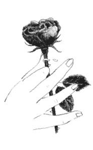 ronflements - rose by Cécile Carer ©lelaboratoireducinéma