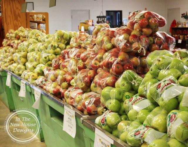 R A Apple Rows