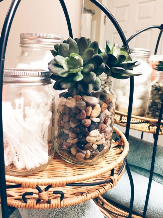 Grow succulents in a jar for the perfect bathroom accessory
