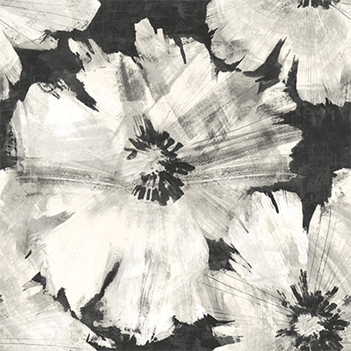 AV50000-Seabrook Avant Garde Curie Large Floral Wallpaper Black and White