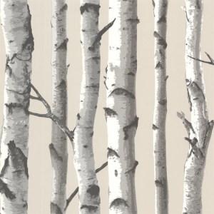 TLL21499 Echo Lake Lodge Tuxbury Birch Tree Wallpaper Beige