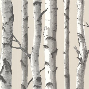 TLL21499 Echo Lake Lodge Tuxbury Birch Tree Wallpaper Beige
