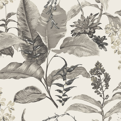 PS41800 Brewster Wallcoverings Kenneth James Palm Springs Maui Wallpaper White