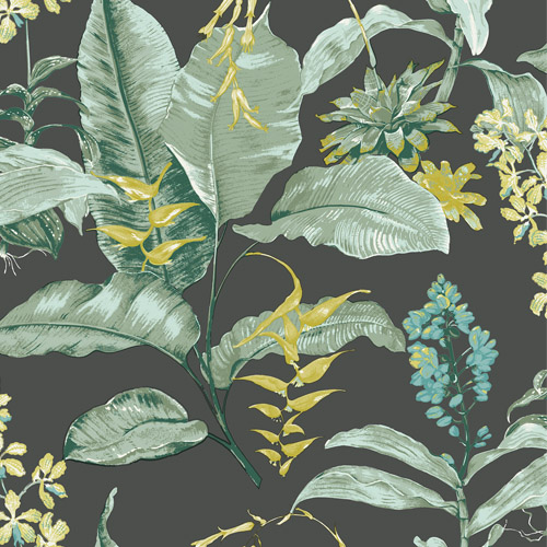 PS41814 Brewster Wallcoverings Kenneth James Palm Springs Maui Wallpaper Black