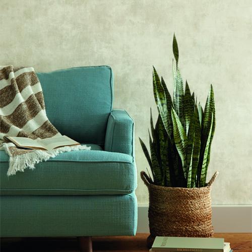 ME1547 York Wallcoverings Joanna Gaines Magnolia Home 2 Plaster of Paris Wallpaper Room Setting