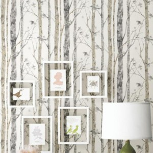 Birch Trees Peel and Stick Wallpaper