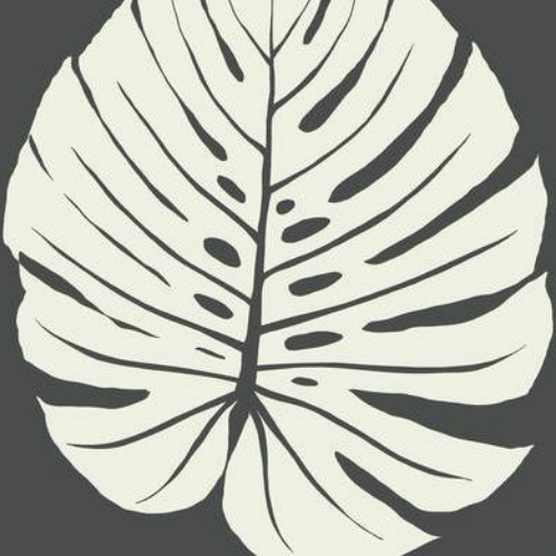 VA1236 York Wallcovering Aviva Stanoff Signature Collection Bali Leaf Wallpaper Black