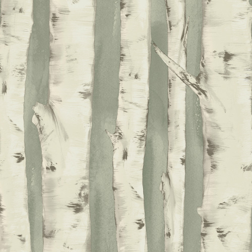 3118-12603 rewster Wallcovering Chesapeake Birch and Sparrow Pioneer Birch Wallpaper Sage