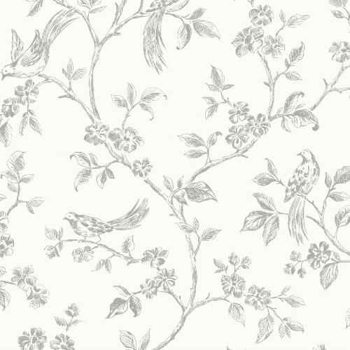 2814-24977 Brewster Wallcovering Advantage Bath Aaron Bird Trail Wallpaper White
