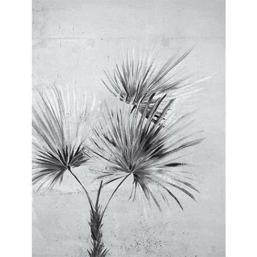 391567 Brewster Wallcoverings Eijffinger Terra Durango Palm Wall Mural Greyscale