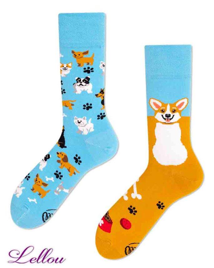 Chaussettes dépareillées Chien amusantes et drôles. La vie est trop courte pour des chaussettes ennuyeuses! Production Europe