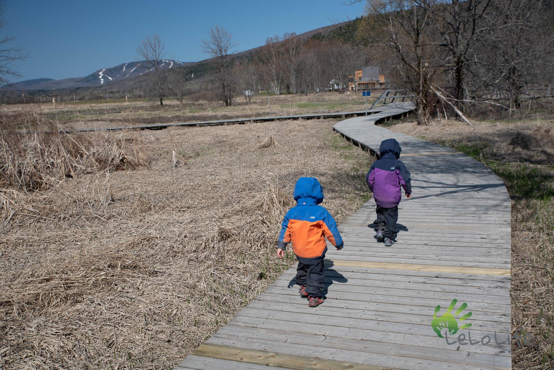 LeLoLife - Marcher avec les enfants - Cap Tourmente avec de superbes trottoirs de bois