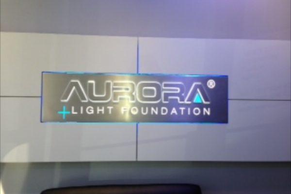 lema-construction-aurora-shoreline-5