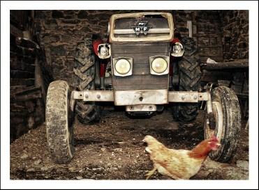Le gnome du vieux tracteur