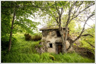 La petite maison en été